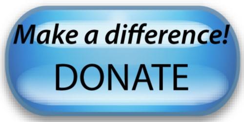 Donate to Build Bridges of Understanding